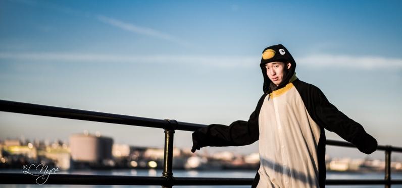 Randii the Penguin